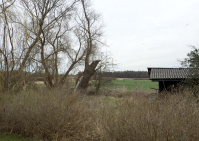 ruin hytten