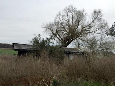 gamle hytte